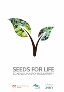Seeds of Life Report