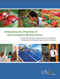 USSIF Report Image - Unleasing the Potential